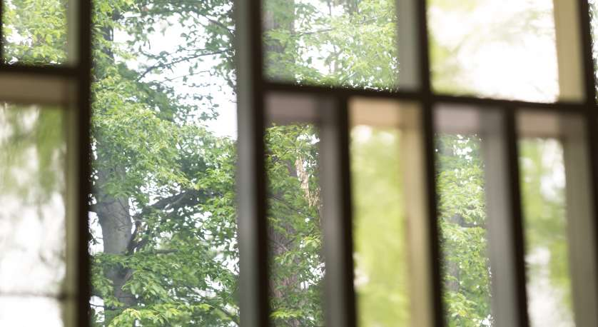 photo of the Sanctuary stained glass windows during summer with trees outside